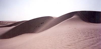 Tunisia - dune